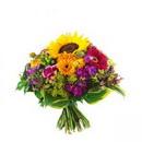 Доставка цветов.ру: букет Игривый
