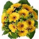 Доставка цветов.ру: букет Солнечный