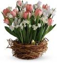Доставка цветов.ру: букет Песня весны!