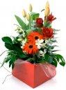 Доставка цветов.ру: композиция Модникам и модницам