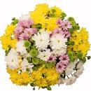 Доставка цветов.ру: букет Веселые веснушки